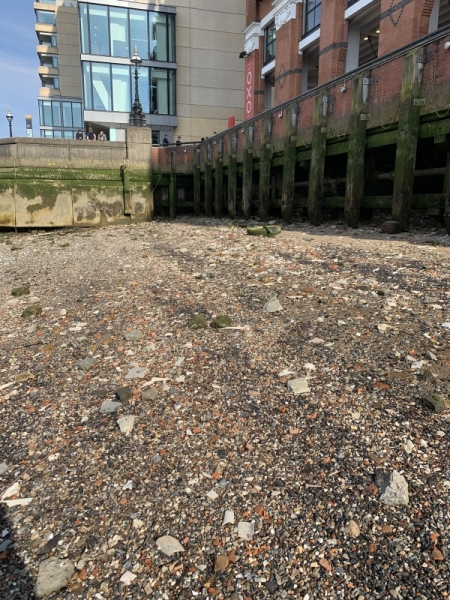 Thames River Bed
