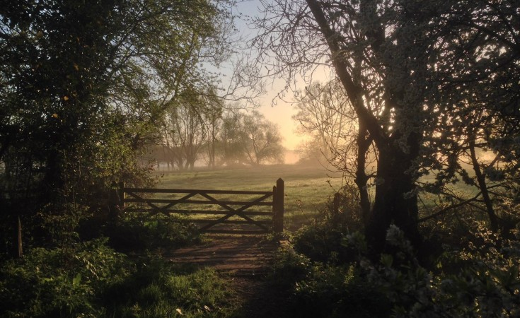 Taken by Mike Leaning, near GC4ZJD0. Great Somerford, Wiltshire