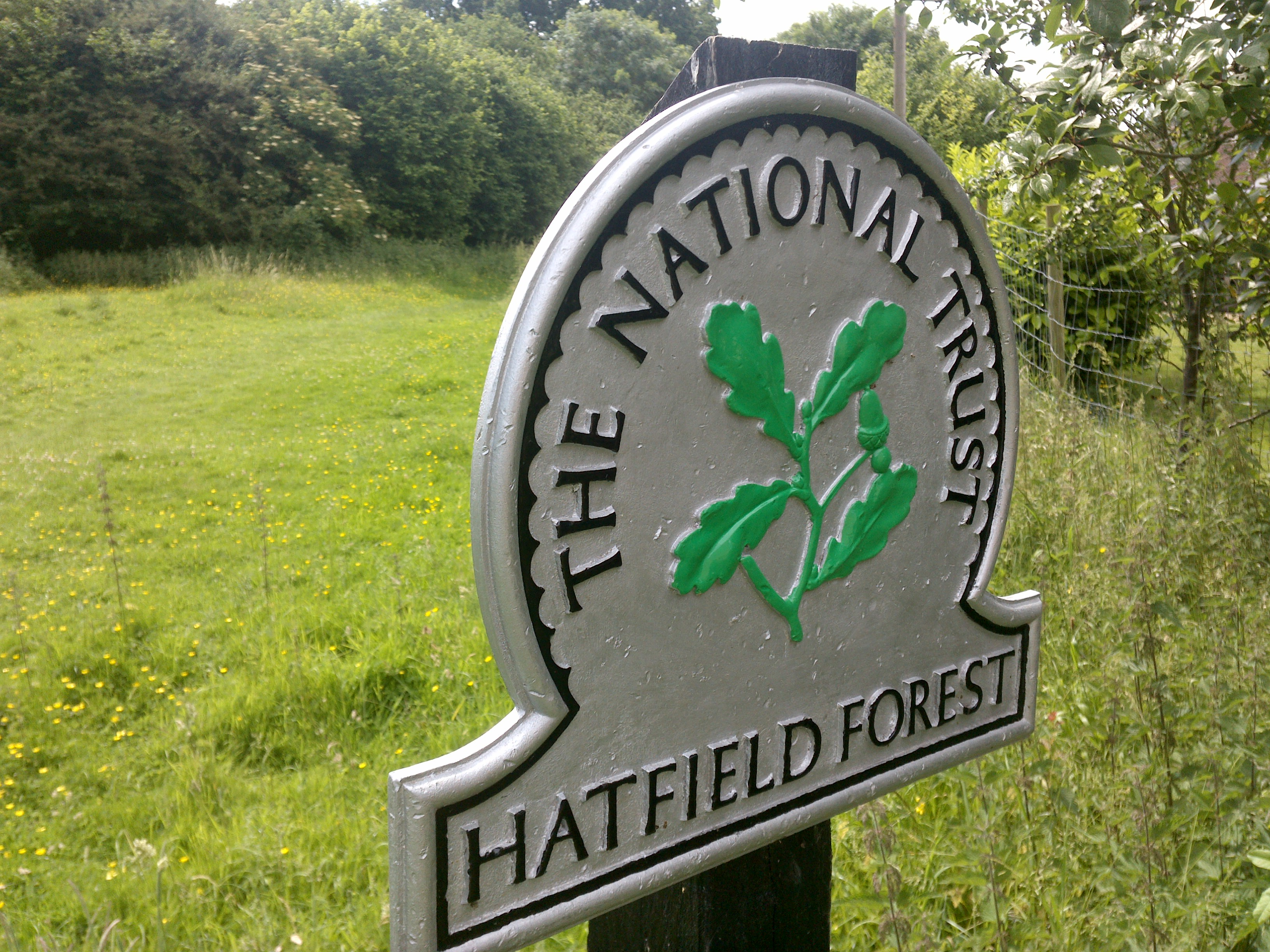 Hatfield Forest - Essex